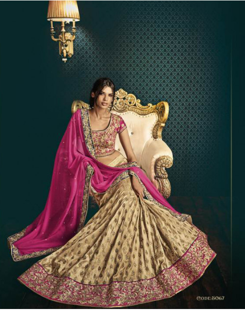 Designer Rani Embroidered Lehenga Choli