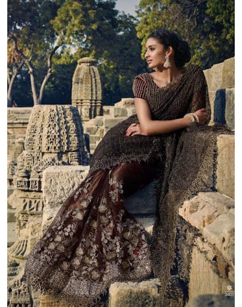 Brown Designer Net Party Saree