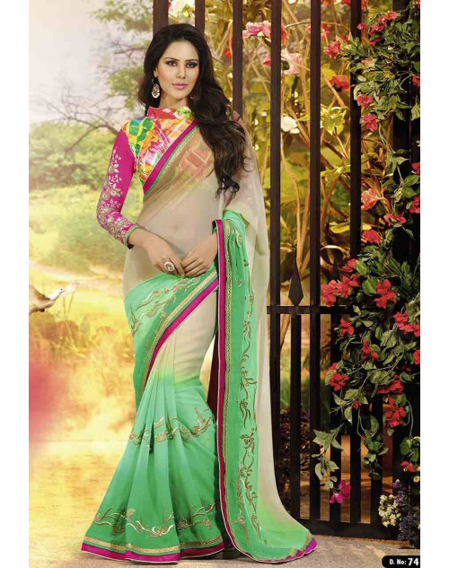 Sophie Choudry Multi and PaleGreen Chiffon Saree