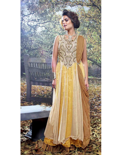 Cream and Yellow Net and Net Brasso Embroidered Gown