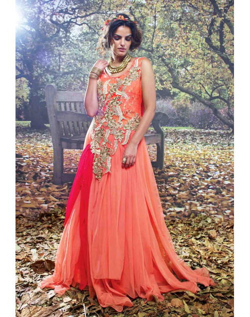 Orange and Pink Net and Net Brasso Embroidered Gown