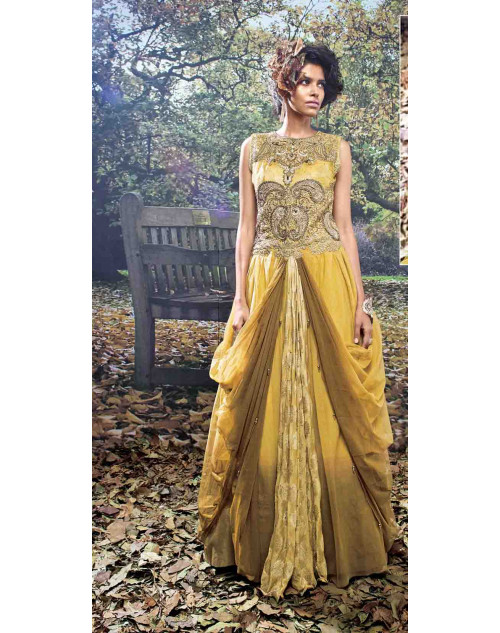 Mustard and Brown Net and Viscose Embroidered Gown