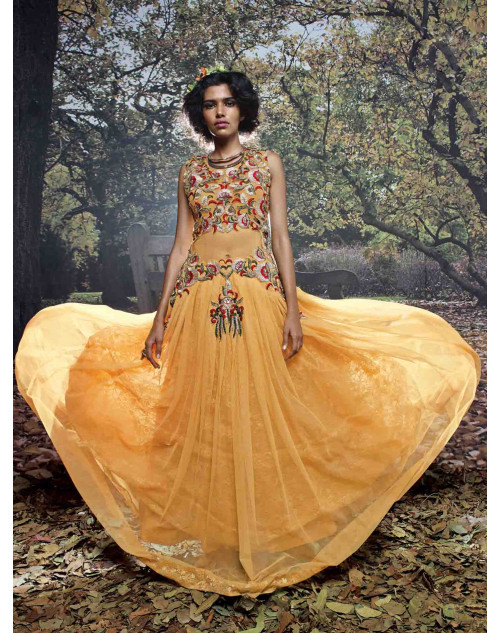 Mustard Net and Net Brasso Embroidered Gown