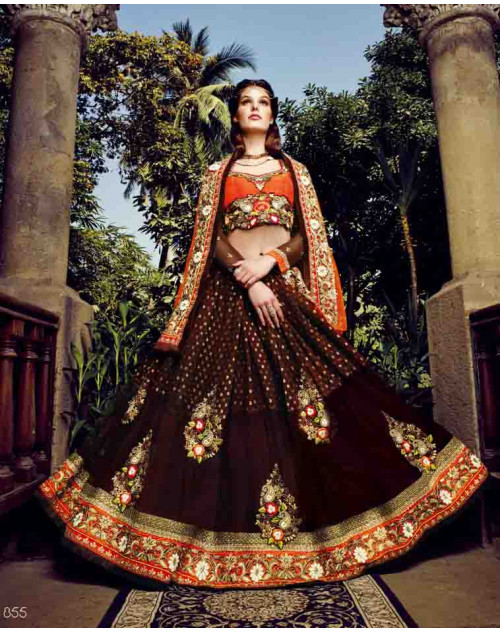 Brown and OrangeRed Net and Bemberg Georgette Saree