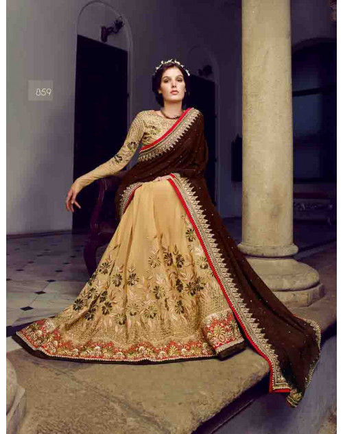 Burlywood and Brown Bemberg and Net Saree